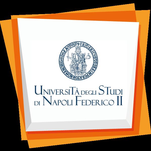 UNIVERSITÀ DEGLI STUDI DI NAPOLI