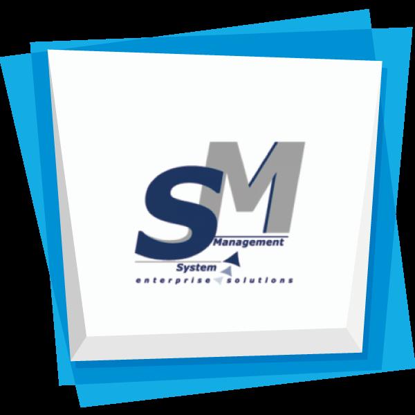 SYSTEM MANAGEMENT S.R.L.